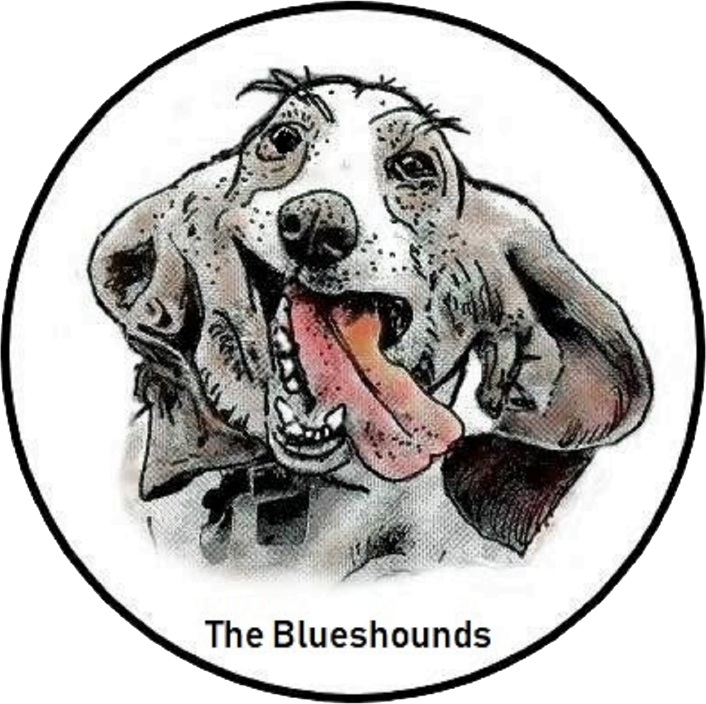 The Blueshounds